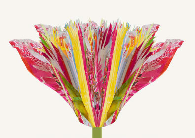 Cool Tulp Yvonne Alting