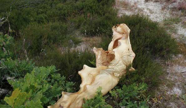 Kunstwerk Annelies Horden